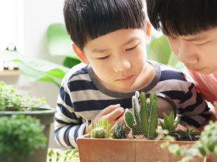 Two kids looking at plants